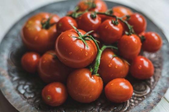 Rostou skoro všude a milují je po celém světě. U nás se ale rajčata začala konzumovat až od 19. století